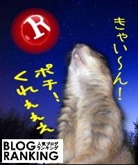 Pradog_ranking_l.jpg